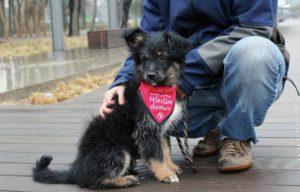 Aryia – adoptovaná