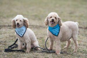 Ben a Endy – adoptovaní