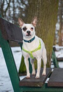 Katrin – adoptovaná