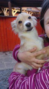 Richi – adoptovaný