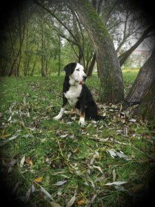 Claire – adoptovaná
